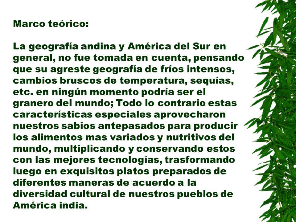Marco teórico: La geografía andina y América del Sur en general, no fue tomada en cuenta, pensando que su agreste geografía de fríos intensos, cambios