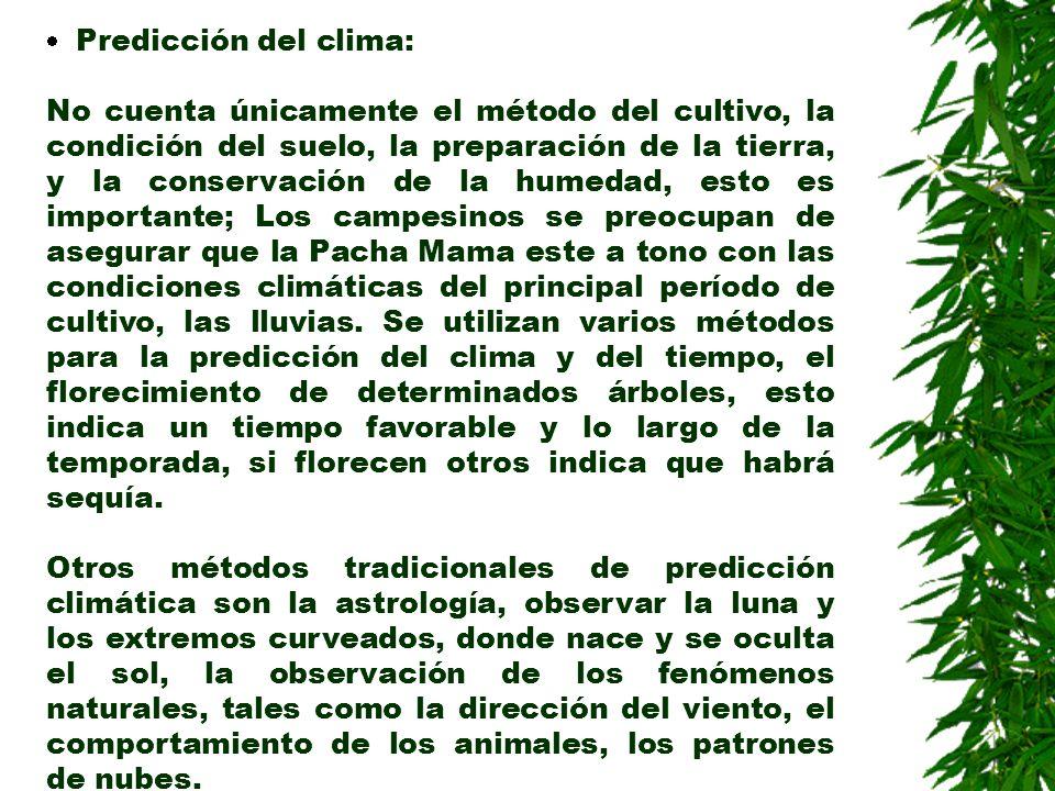 Predicción del clima: No cuenta únicamente el método del cultivo, la condición del suelo, la preparación de la tierra, y la conservación de la humedad