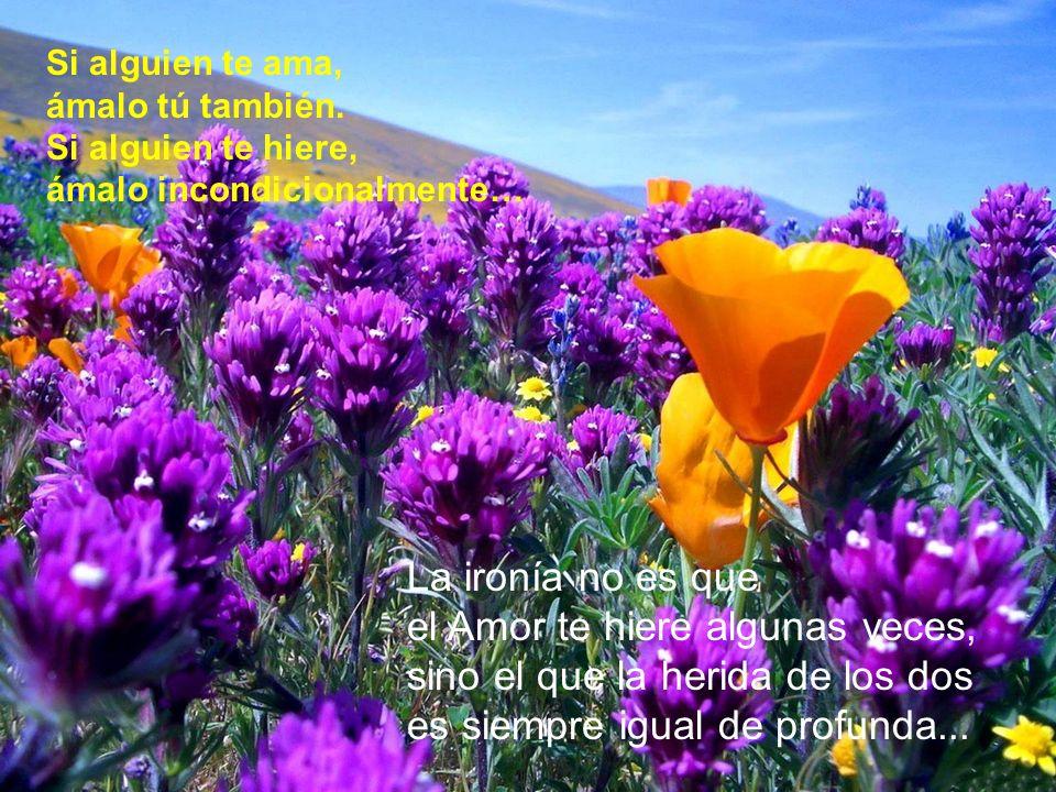 Aún falta mucho por Descubrir, Aprender y Recibir... www.elatalaya.com ¡SIGUE ADELANTE... !