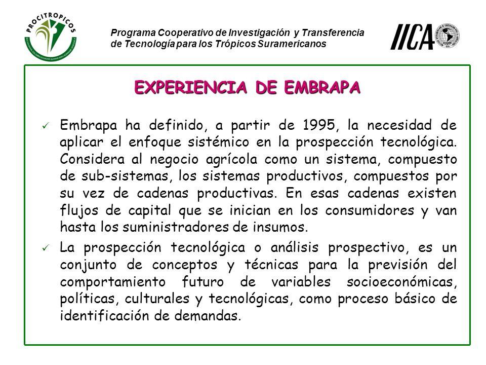 Programa Cooperativo de Investigación y Transferencia de Tecnología para los Trópicos Suramericanos Embrapa ha definido, a partir de 1995, la necesidad de aplicar el enfoque sistémico en la prospección tecnológica.
