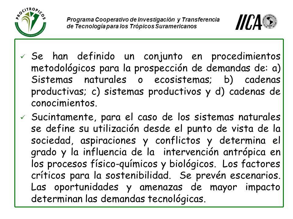 Programa Cooperativo de Investigación y Transferencia de Tecnología para los Trópicos Suramericanos Se han definido un conjunto en procedimientos metodológicos para la prospección de demandas de: a) Sistemas naturales o ecosistemas; b) cadenas productivas; c) sistemas productivos y d) cadenas de conocimientos.