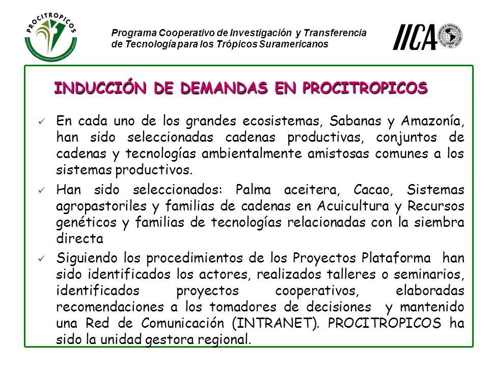 Programa Cooperativo de Investigación y Transferencia de Tecnología para los Trópicos Suramericanos En cada uno de los grandes ecosistemas, Sabanas y Amazonía, han sido seleccionadas cadenas productivas, conjuntos de cadenas y tecnologías ambientalmente amistosas comunes a los sistemas productivos.