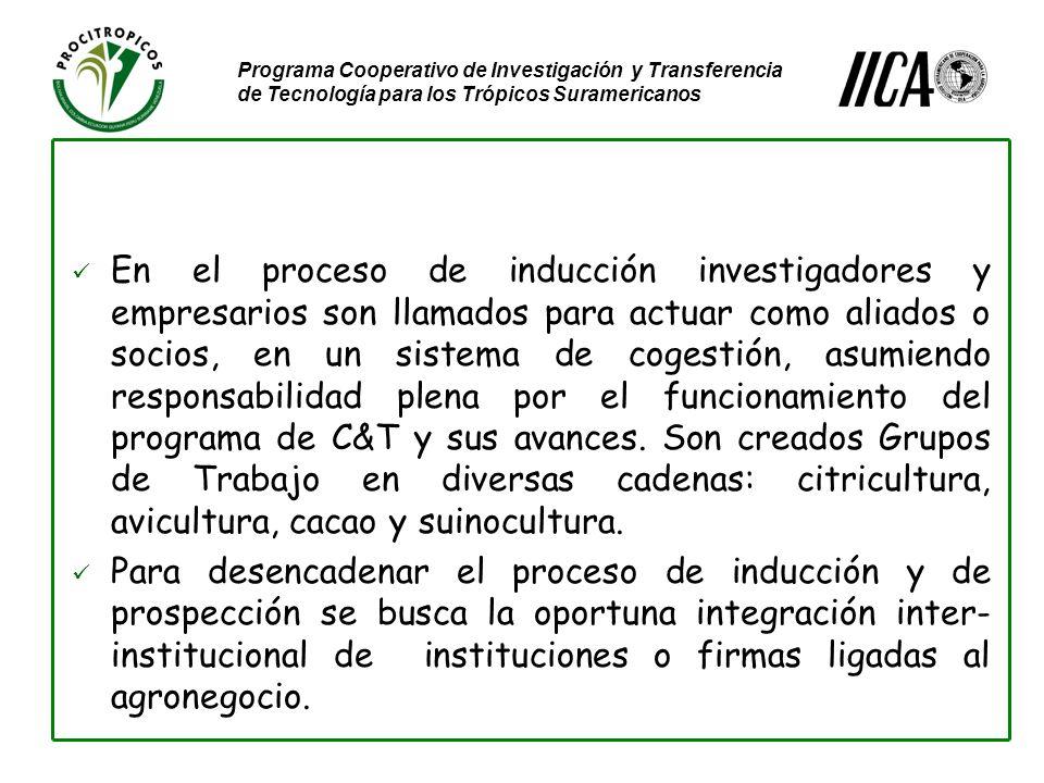 Programa Cooperativo de Investigación y Transferencia de Tecnología para los Trópicos Suramericanos En el proceso de inducción investigadores y empresarios son llamados para actuar como aliados o socios, en un sistema de cogestión, asumiendo responsabilidad plena por el funcionamiento del programa de C&T y sus avances.