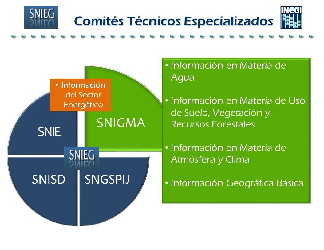 Comités Técnicos Especializados SNIGMA SNGSPIJSNISD SNIE Información del Sector Energético Información en Materia de Agua Información en Materia de Us