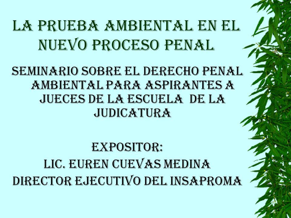 LA PRUEBA AMBIENTAL EN EL NUEVO PROCESO PENAL SEMINARIO SOBRE EL DERECHO PENAL AMBIENTAL PARA ASPIRANTES A JUECES DE LA ESCUELA DE LA JUDICATURA EXPOSITOR: LIC.