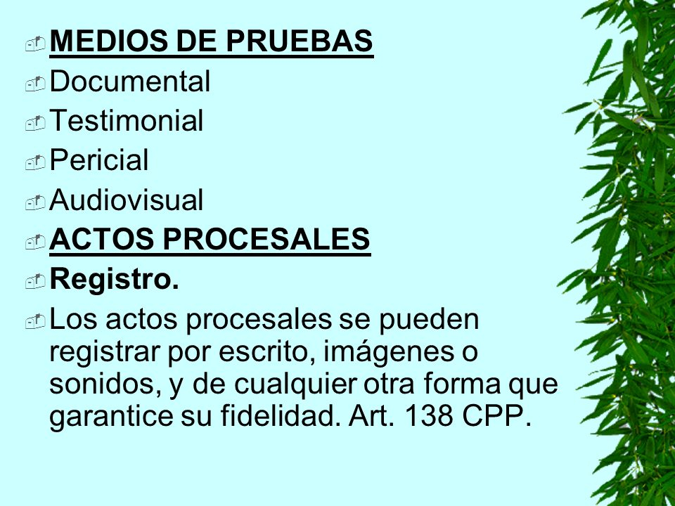 MEDIOS DE PRUEBAS Documental Testimonial Pericial Audiovisual ACTOS PROCESALES Registro.