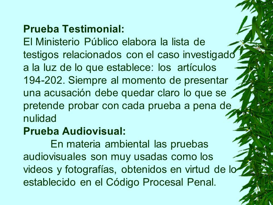 Prueba Testimonial: El Ministerio Público elabora la lista de testigos relacionados con el caso investigado a la luz de lo que establece: los artículos 194-202.