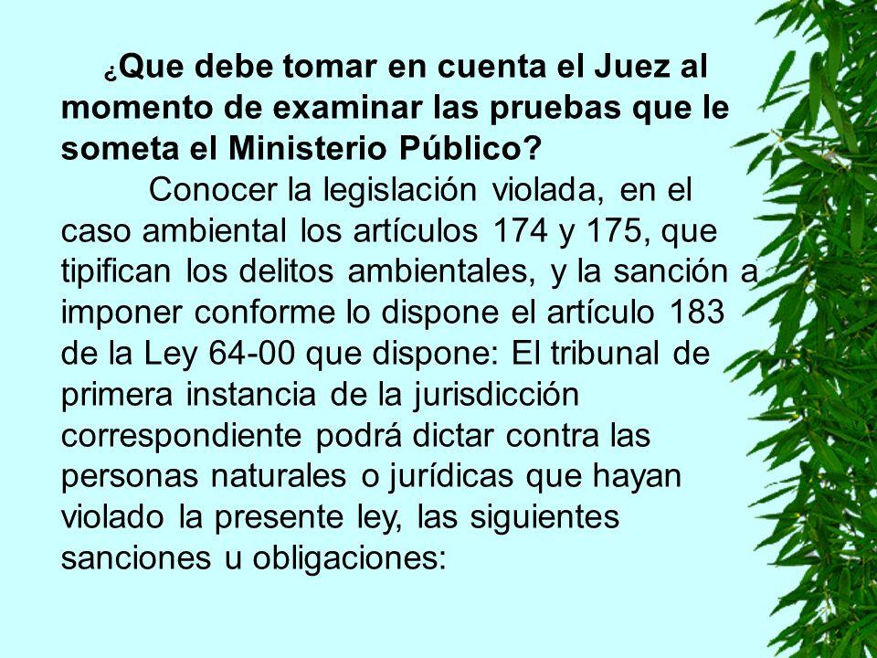 ¿ Que debe tomar en cuenta el Juez al momento de examinar las pruebas que le someta el Ministerio Público.