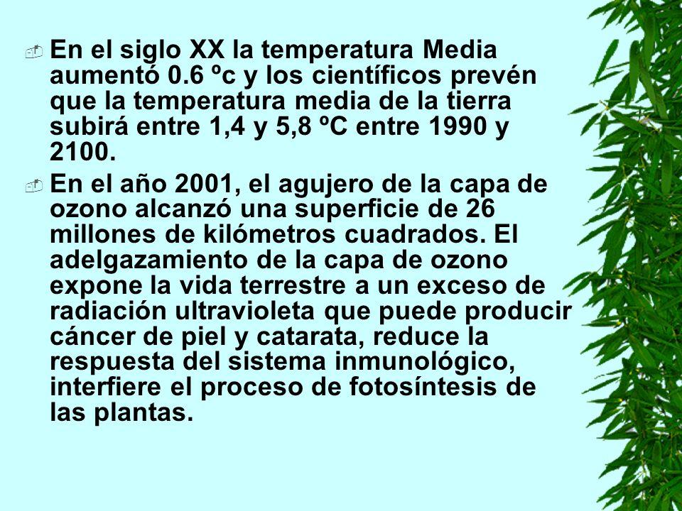 En el siglo XX la temperatura Media aumentó 0.6 ºc y los científicos prevén que la temperatura media de la tierra subirá entre 1,4 y 5,8 ºC entre 1990 y 2100.