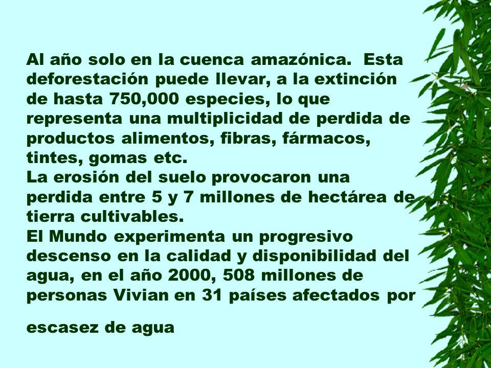 Al año solo en la cuenca amazónica.