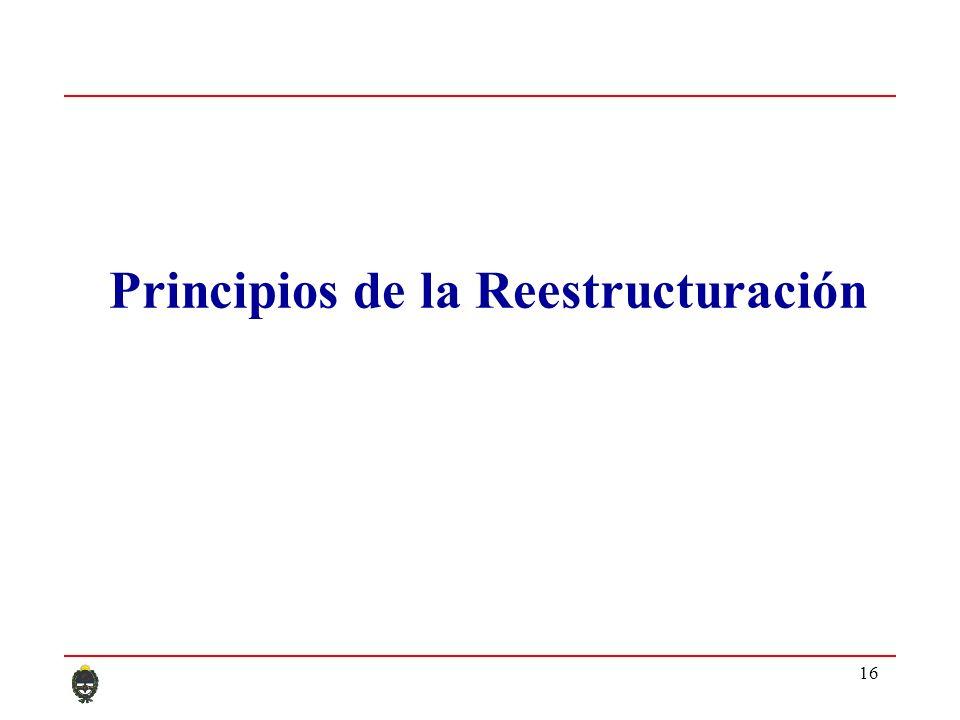 16 Principios de la Reestructuración