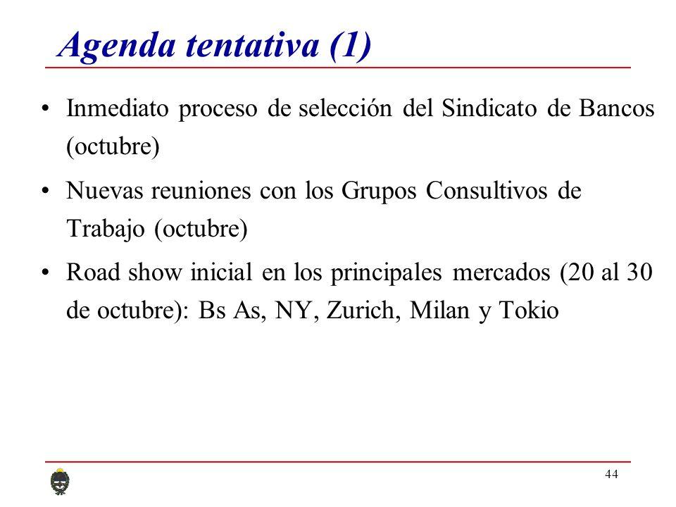 44 Agenda tentativa (1) Inmediato proceso de selección del Sindicato de Bancos (octubre) Nuevas reuniones con los Grupos Consultivos de Trabajo (octubre) Road show inicial en los principales mercados (20 al 30 de octubre): Bs As, NY, Zurich, Milan y Tokio