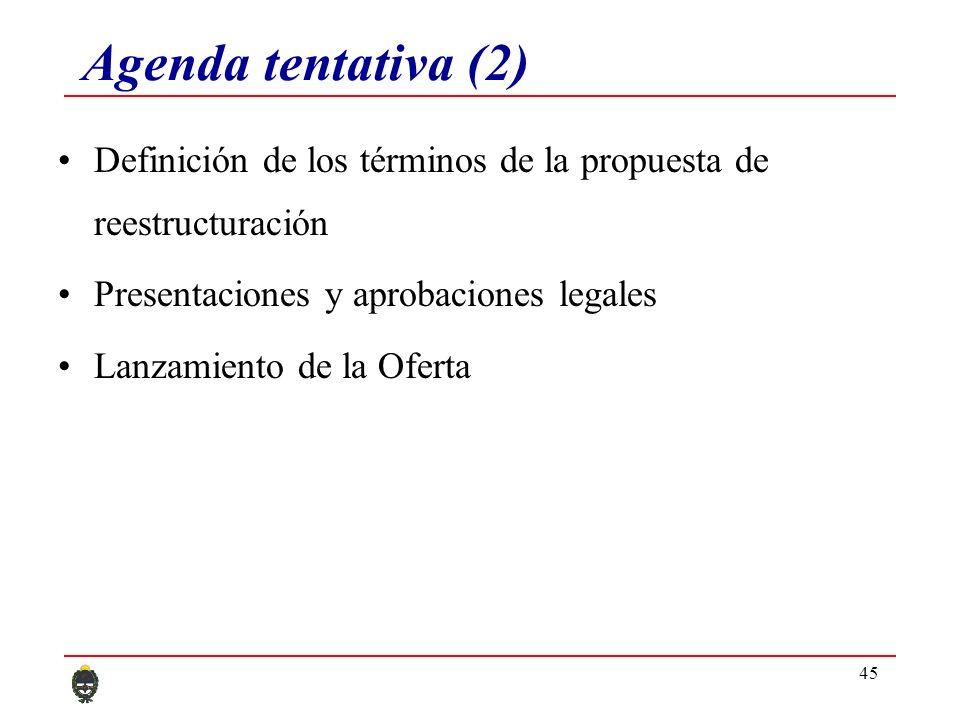 45 Agenda tentativa (2) Definición de los términos de la propuesta de reestructuración Presentaciones y aprobaciones legales Lanzamiento de la Oferta