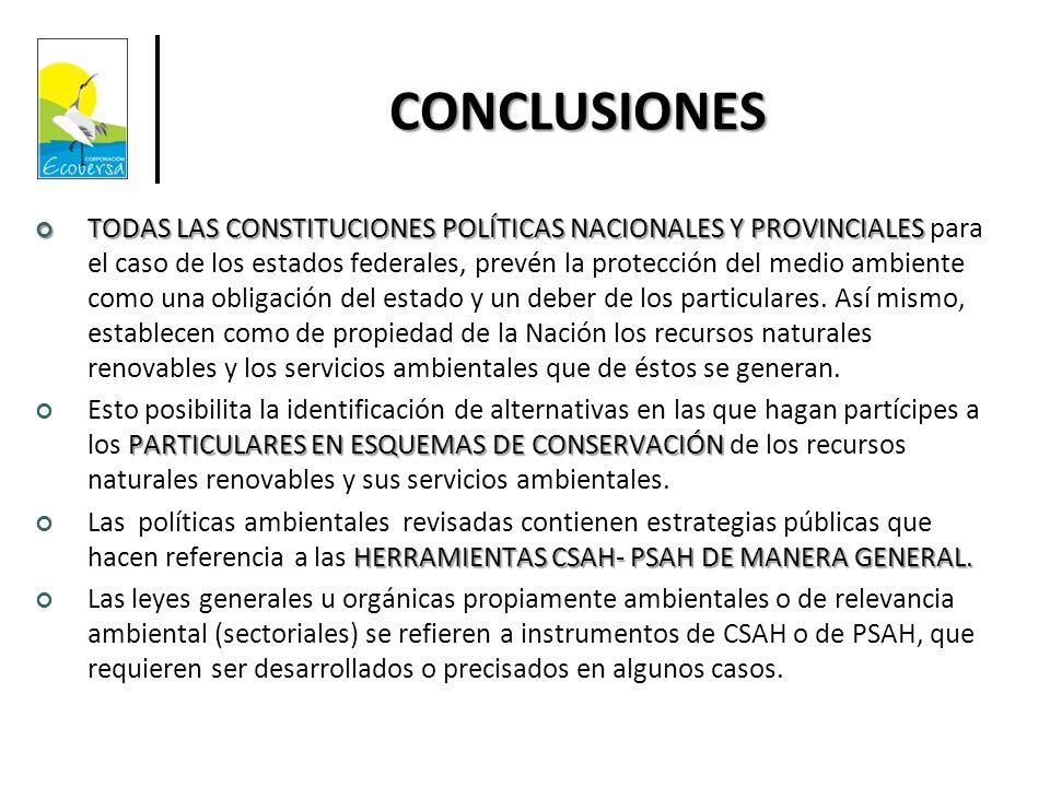 CONCLUSIONES TODAS LAS CONSTITUCIONES POLÍTICAS NACIONALES Y PROVINCIALES TODAS LAS CONSTITUCIONES POLÍTICAS NACIONALES Y PROVINCIALES para el caso de