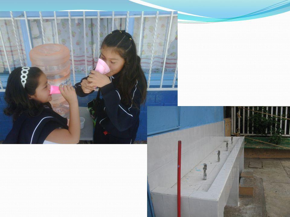 Material maestros Tríptico de introducción al proyecto y problema de obesidad en México.