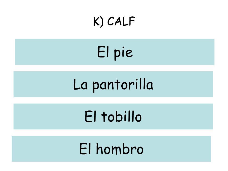 K) CALF El pie La pantorilla El tobillo El hombro