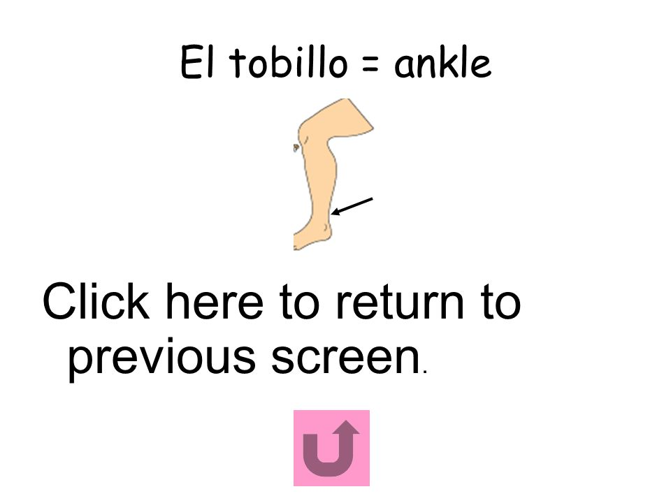 El tobillo = ankle Click here to return to previous screen.