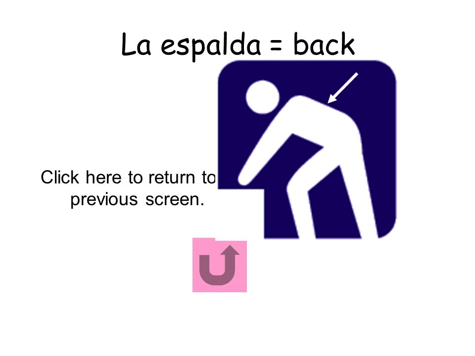 La espalda = back Click here to return to previous screen.