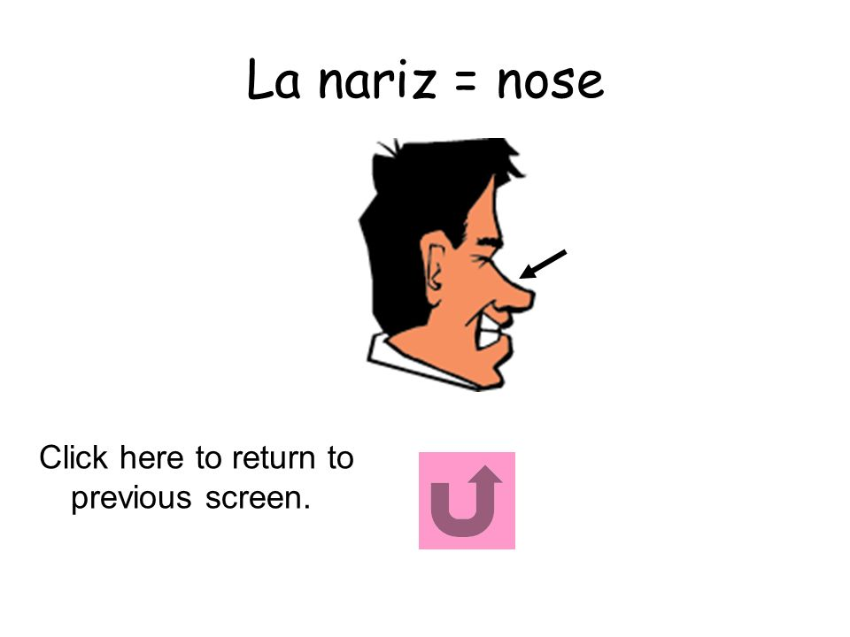 La nariz = nose Click here to return to previous screen.