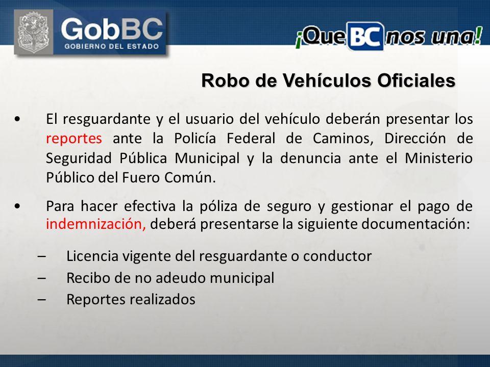 El resguardante y el usuario del vehículo deberán presentar los reportes ante la Policía Federal de Caminos, Dirección de Seguridad Pública Municipal