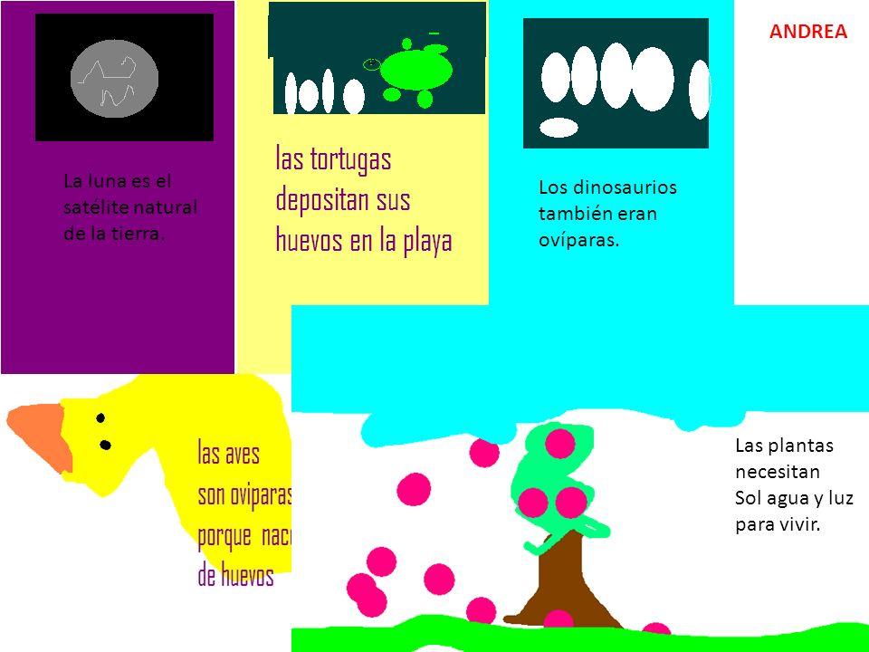 La luna es el satélite natural de la tierra. Los dinosaurios también eran ovíparas. Las plantas necesitan Sol agua y luz para vivir. ANDREA