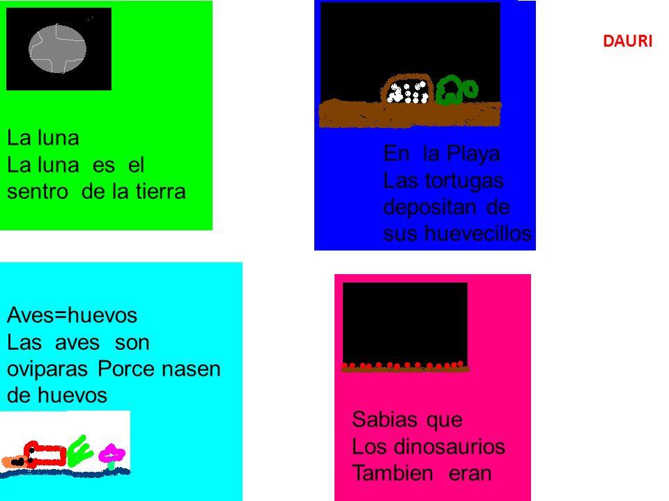 La luna La luna es el sentro de la tierra En la Playa Las tortugas depositan de sus huevecillos Aves=huevos Las aves son oviparas Porce nasen de huevos Sabias que Los dinosaurios Tambien eran DAURI