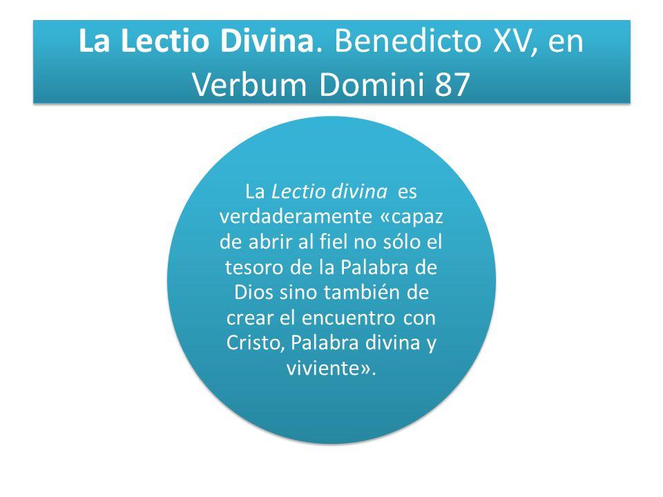 La Lectio Divina. Benedicto XV, en Verbum Domini 87 La Lectio divina es verdaderamente «capaz de abrir al fiel no sólo el tesoro de la Palabra de Dios