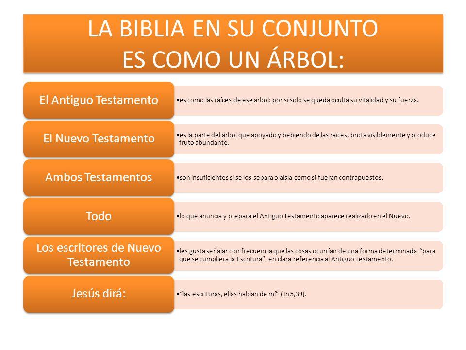 LA BIBLIA EN SU CONJUNTO ES COMO UN ÁRBOL: es como las raíces de ese árbol: por sí solo se queda oculta su vitalidad y su fuerza. El Antiguo Testament