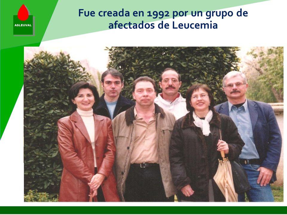 ASLEUVAL Asociación para la lucha contra la Leucemia de la Comunidad Valenciana