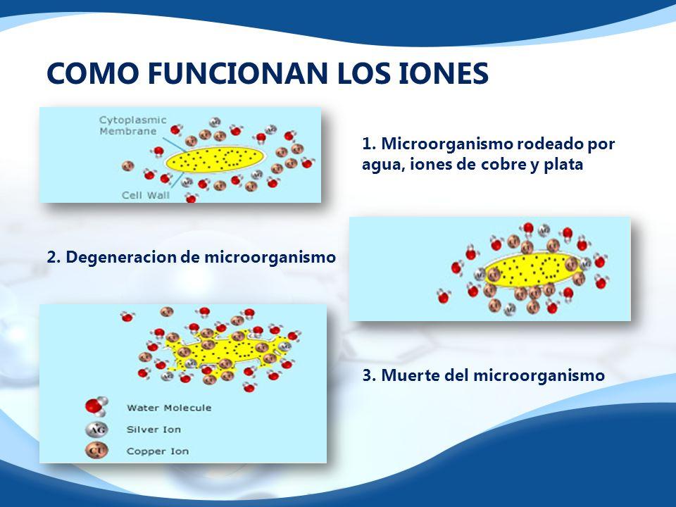 COMO FUNCIONAN LOS IONES 1. Microorganismo rodeado por agua, iones de cobre y plata 2. Degeneracion de microorganismo 3. Muerte del microorganismo