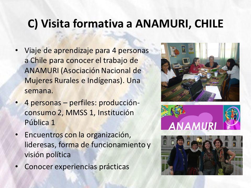 C) Visita formativa a ANAMURI, CHILE Viaje de aprendizaje para 4 personas a Chile para conocer el trabajo de ANAMURI (Asociación Nacional de Mujeres R