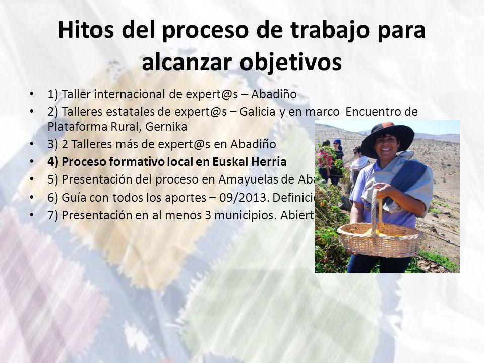 Hitos del proceso de trabajo para alcanzar objetivos 1) Taller internacional de expert@s – Abadiño 2) Talleres estatales de expert@s – Galicia y en ma
