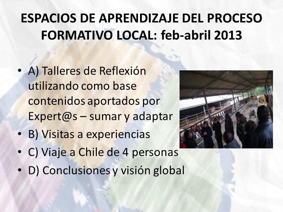 ESPACIOS DE APRENDIZAJE DEL PROCESO FORMATIVO LOCAL: feb-abril 2013 A) Talleres de Reflexión utilizando como base contenidos aportados por Expert@s –