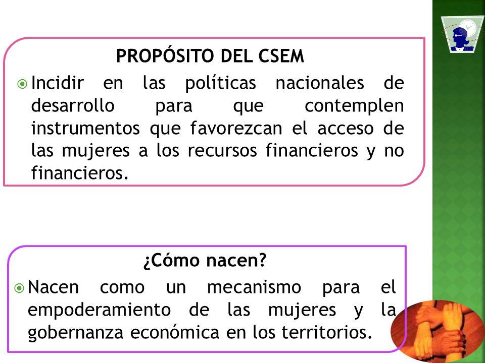 PROPÓSITO DEL CSEM Incidir en las políticas nacionales de desarrollo para que contemplen instrumentos que favorezcan el acceso de las mujeres a los recursos financieros y no financieros.