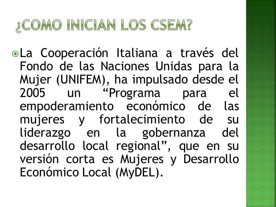 La Cooperación Italiana a través del Fondo de las Naciones Unidas para la Mujer (UNIFEM), ha impulsado desde el 2005 un Programa para el empoderamiento económico de las mujeres y fortalecimiento de su liderazgo en la gobernanza del desarrollo local regional, que en su versión corta es Mujeres y Desarrollo Económico Local (MyDEL).