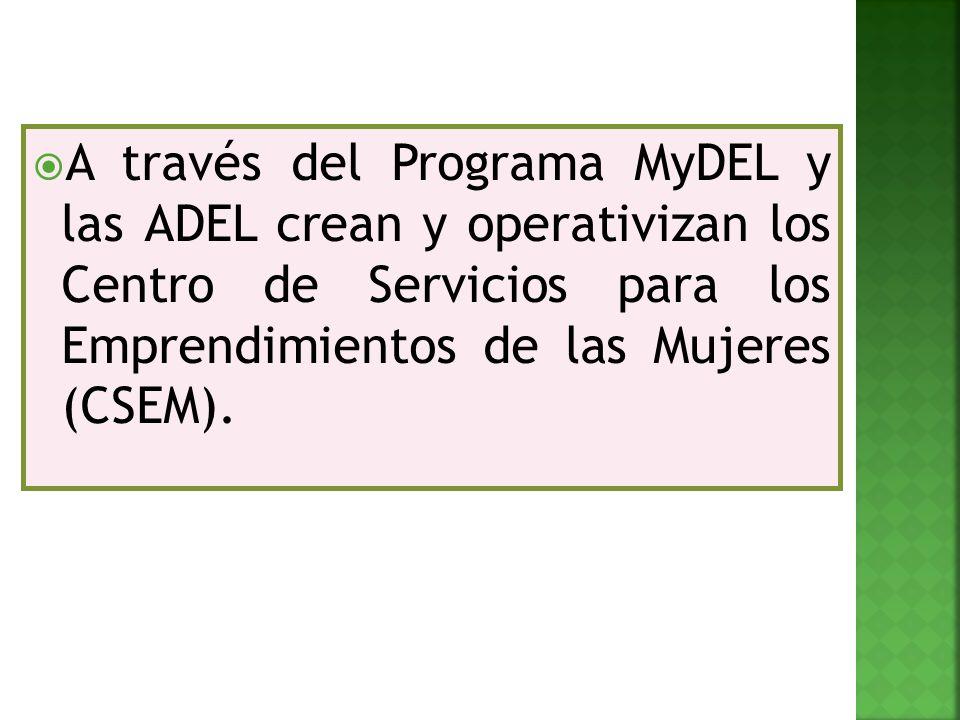 A través del Programa MyDEL y las ADEL crean y operativizan los Centro de Servicios para los Emprendimientos de las Mujeres (CSEM).