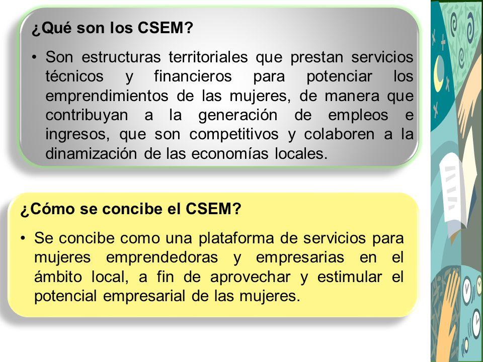 ¿Cómo se concibe el CSEM.