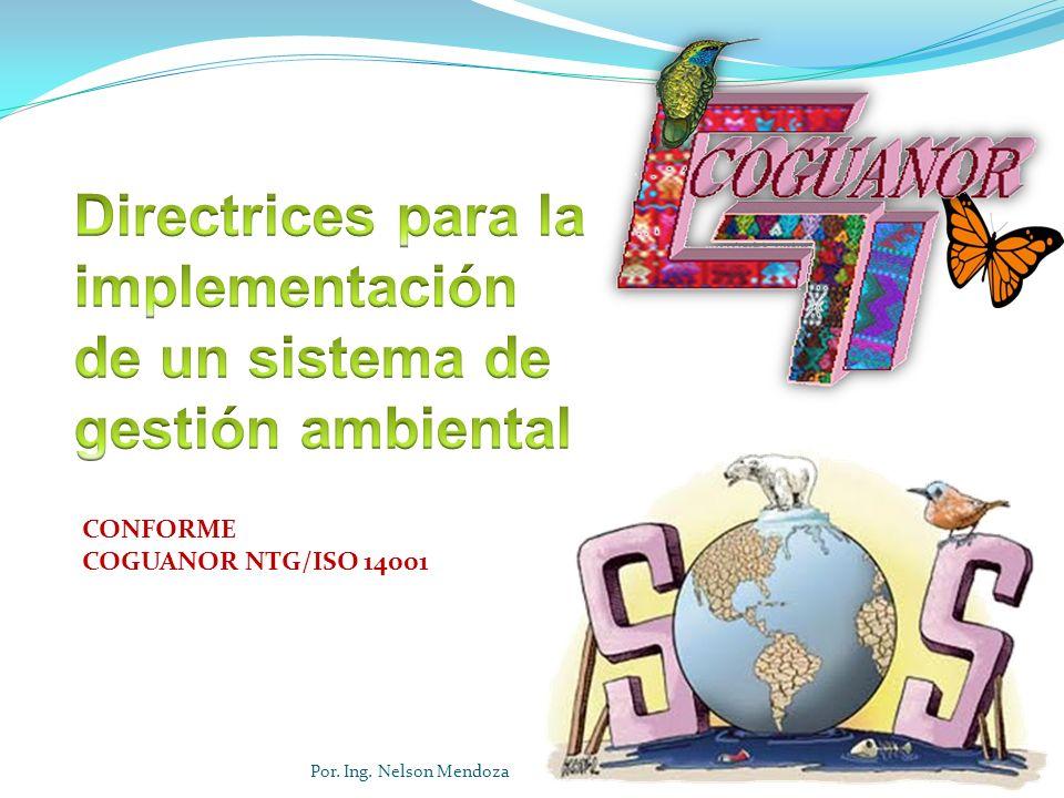 CONFORME COGUANOR NTG/ISO 14001 Por. Ing. Nelson Mendoza