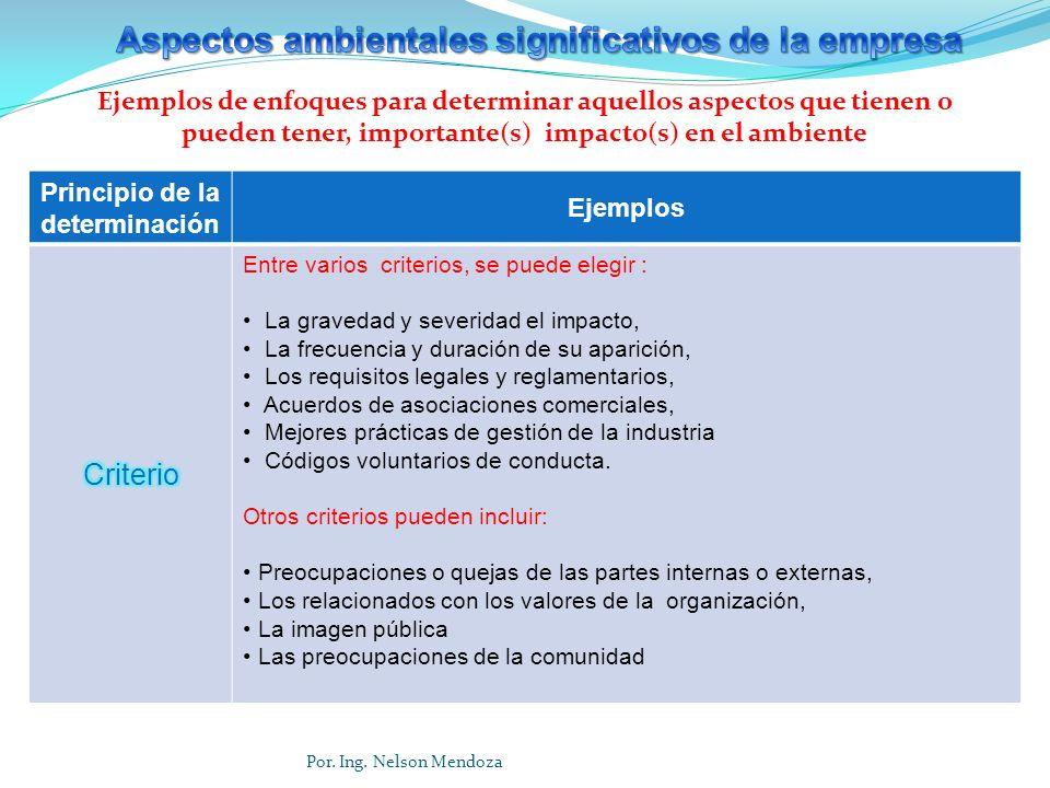 Principio de la determinación Ejemplos Entre varios criterios, se puede elegir : La gravedad y severidad el impacto, La frecuencia y duración de su ap