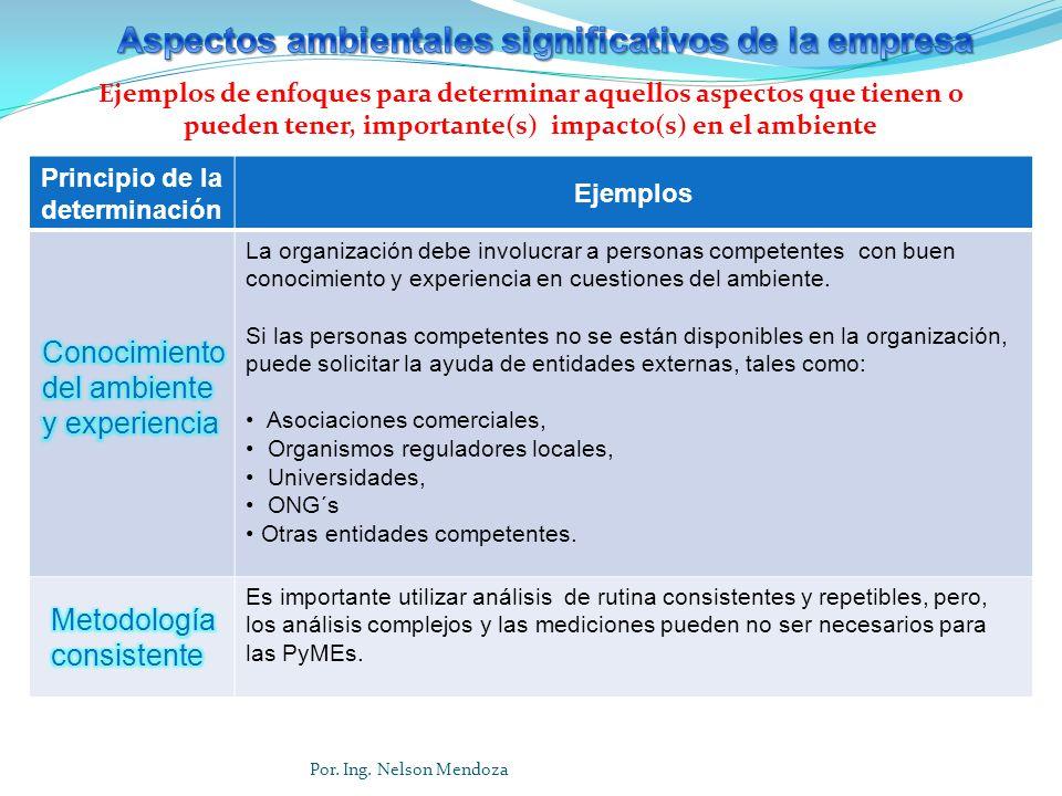 Principio de la determinación Ejemplos La organización debe involucrar a personas competentes con buen conocimiento y experiencia en cuestiones del am
