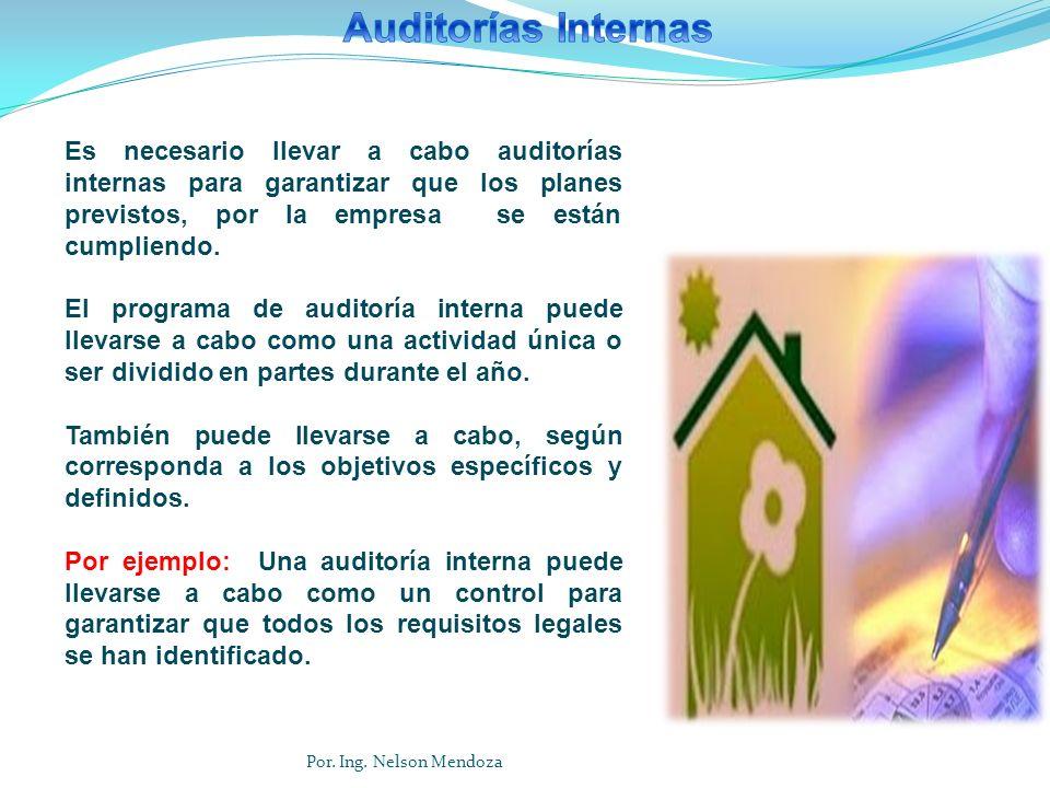 Es necesario llevar a cabo auditorías internas para garantizar que los planes previstos, por la empresa se están cumpliendo. El programa de auditoría