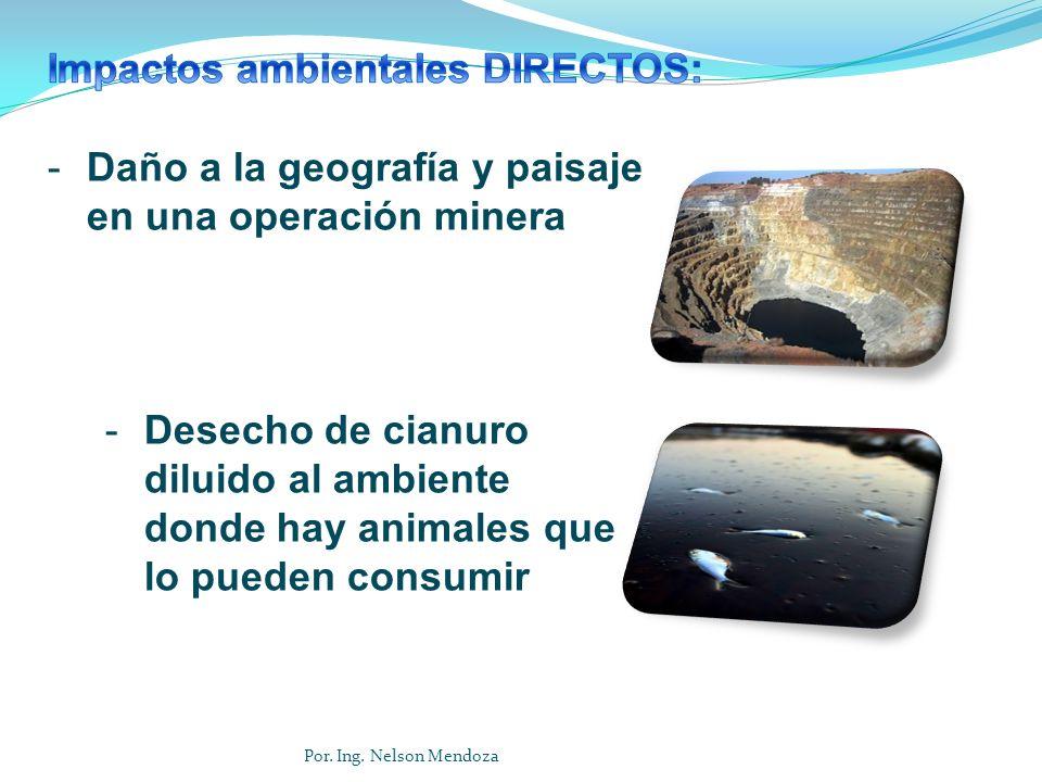-Daño a la geografía y paisaje en una operación minera -Desecho de cianuro diluido al ambiente donde hay animales que lo pueden consumir Por. Ing. Nel