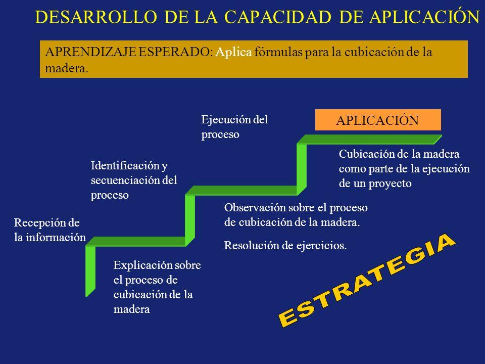 DESARROLLO DE LA CAPACIDAD DE APLICACIÓN APLICACIÓN Recepción de la información Identificación y secuenciación del proceso Ejecución del proceso Expli