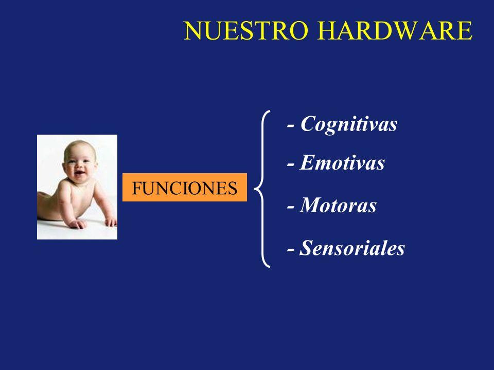 NUESTRO HARDWARE FUNCIONES - Cognitivas - Emotivas - Motoras - Sensoriales