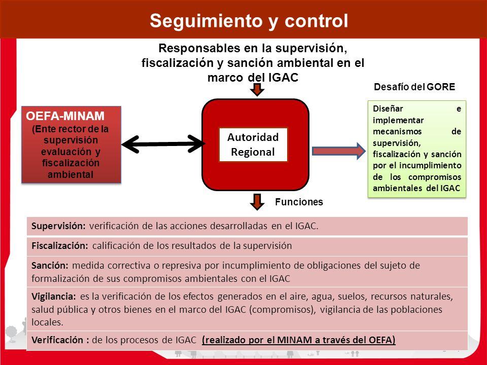 Seguimiento y control Responsables en la supervisión, fiscalización y sanción ambiental en el marco del IGAC Funciones Autoridad Regional Supervisión: