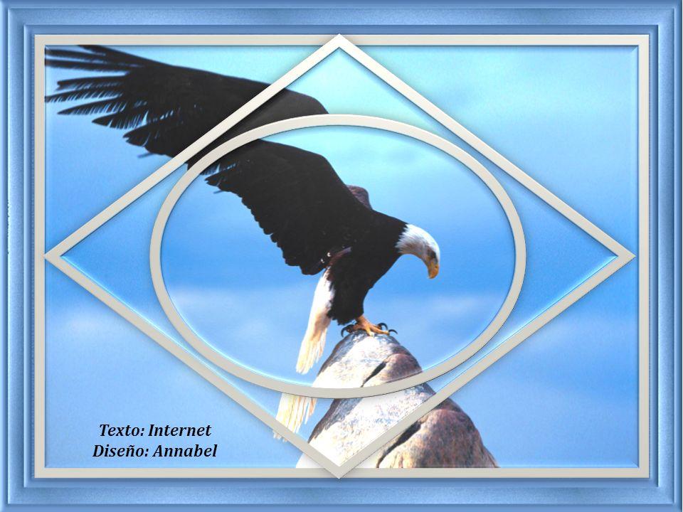 A veces, en nuestras vidas, las circunstancias hacen el papel del águila. Son ellas las que nos empujan hacia el abismo.