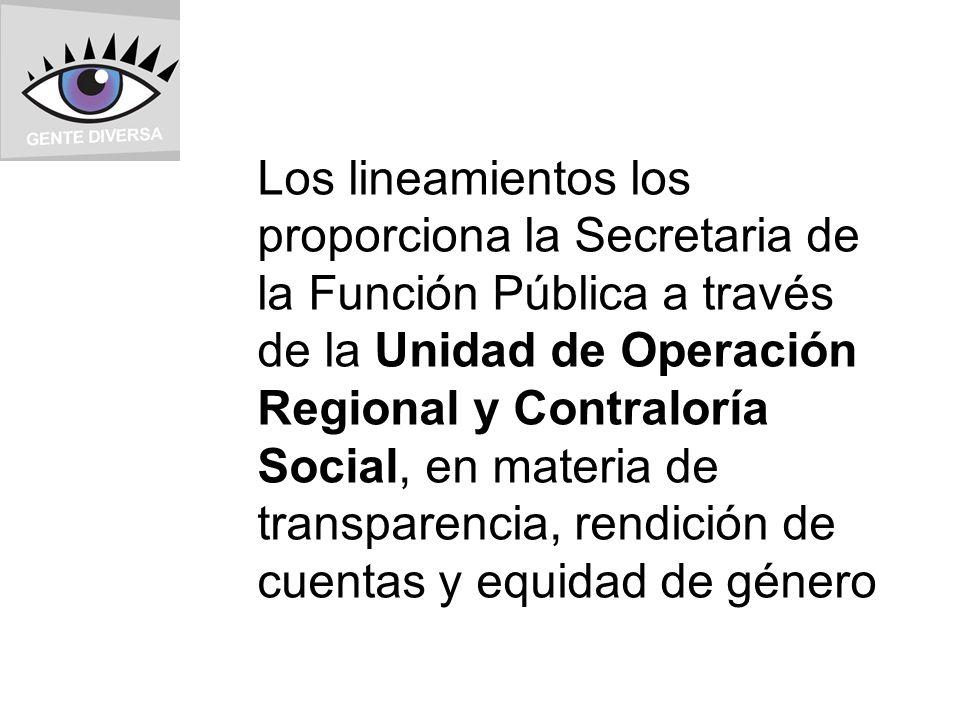 Los lineamientos los proporciona la Secretaria de la Función Pública a través de la Unidad de Operación Regional y Contraloría Social, en materia de transparencia, rendición de cuentas y equidad de género