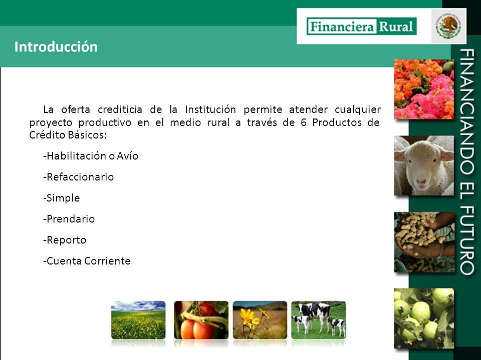 Introducción La oferta crediticia de la Institución permite atender cualquier proyecto productivo en el medio rural a través de 6 Productos de Crédito