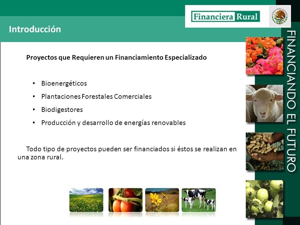 Introducción Proyectos que Requieren un Financiamiento Especializado Bioenergéticos Plantaciones Forestales Comerciales Biodigestores Producción y des