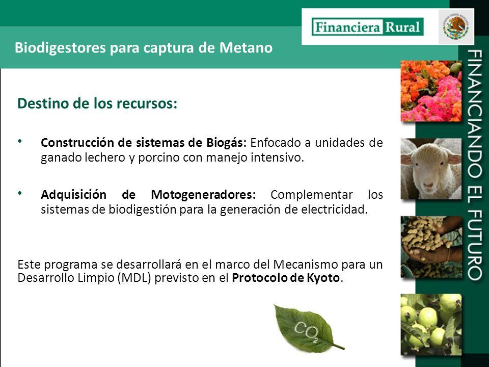 Destino de los recursos: Construcción de sistemas de Biogás: Enfocado a unidades de ganado lechero y porcino con manejo intensivo. Adquisición de Moto